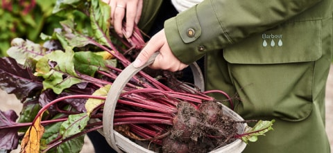 We use fresh, local ingredients!