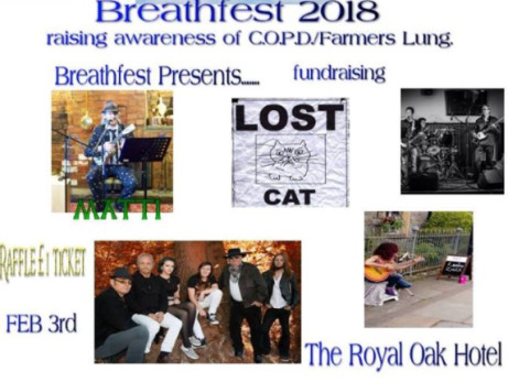 Breathfest Live Music Fundraising Event