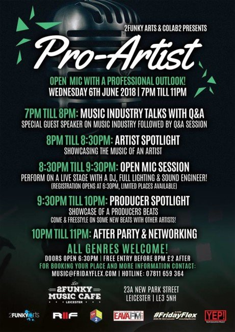 Pro-Artist: Open mic with a professional outlook!