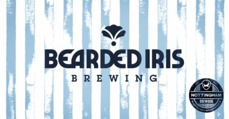 Bearded Iris Draft Showcase