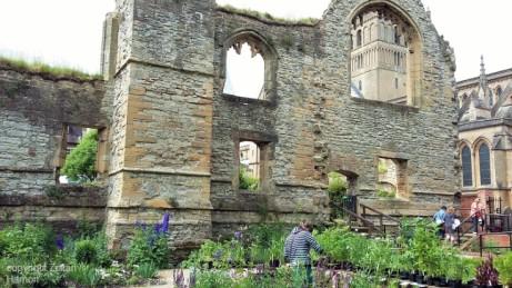 Southwell Minster Gardens