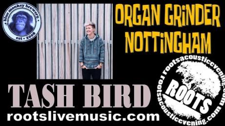 The Organ Grinder Nottingham - presents Tash Bird