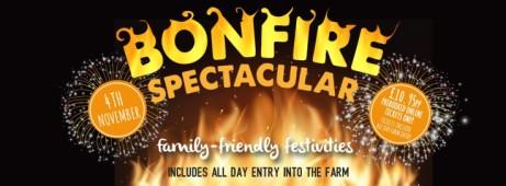 Bonfire Spectacular 2018
