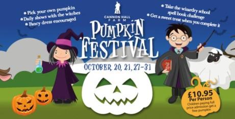 Pumpkin Festival and Wizardry School