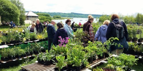 Carsington Water Wonderful Plant Fairs
