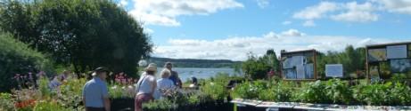 Carsington Water Wonderful Plant Fairs