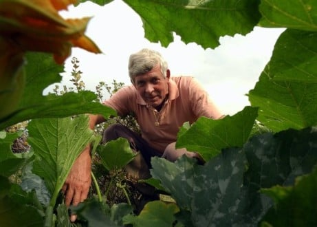 LIVE SHOW - Terry Walton: Allotment Tips from the Jeremy Vine a