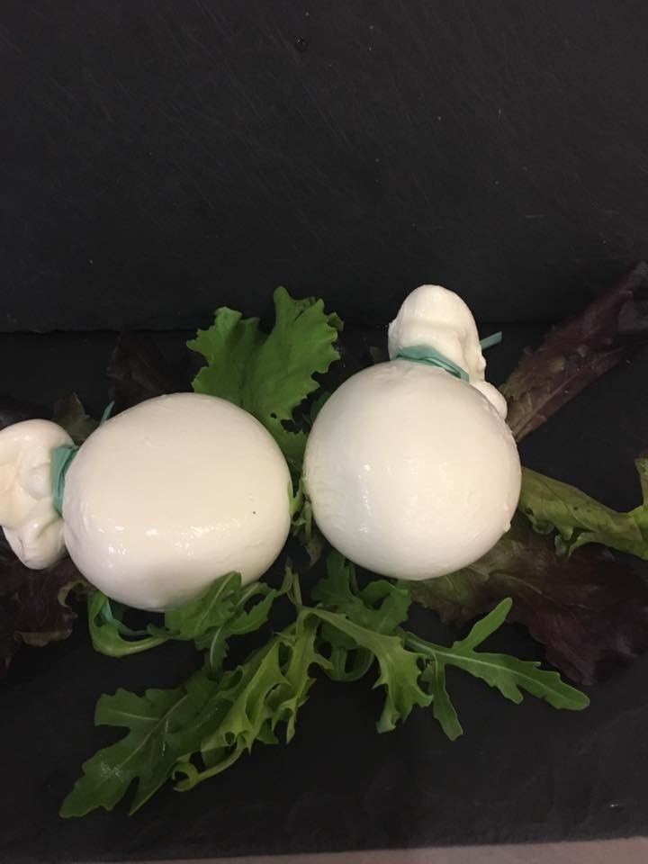 Some lovely fresh burrata arrived this morning.