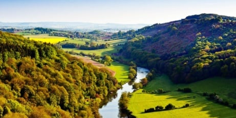 Forest of Dean Escape for 2 with cream tea - LESS THAN 1/2 PRICE!