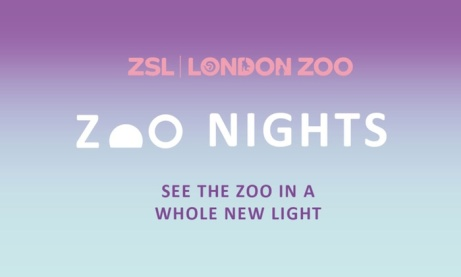SAVE OVER 10% on ADULT ONLY London Zoo - Zoo Nights tickets!