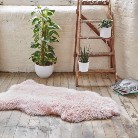 SAVE 68% Royal Dream Large Sheepskin Rug- Heavenly Pink!
