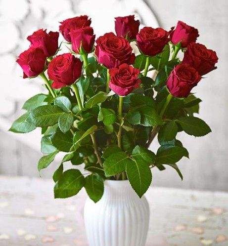 Get Valentines Day Ready - Upper Class Waitrose Foundation Roses, £25!