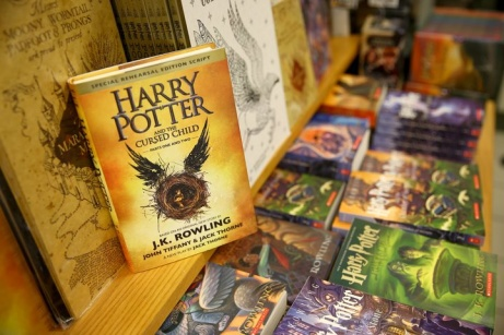 Buy your Harry Potter books from Wordery, and SAVE on Everything a true Potterhead needs!
