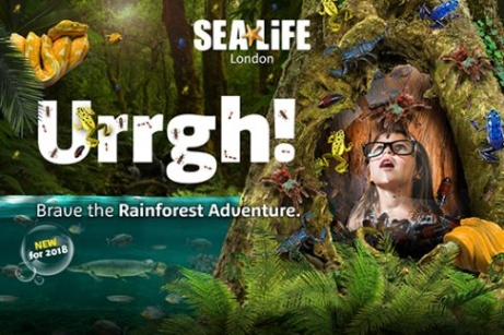 London Aquarium - Official Direct Entry from £17 - Exclusive to 365Tickets!