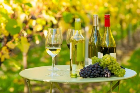 English Vineyard Tour, Wine Tasting and Lunch for Two - ONLY £99!