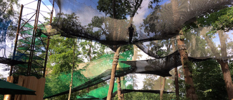 AN ADVENTURE PLAYGROUND UP IN THE TREES - Just £20.00!