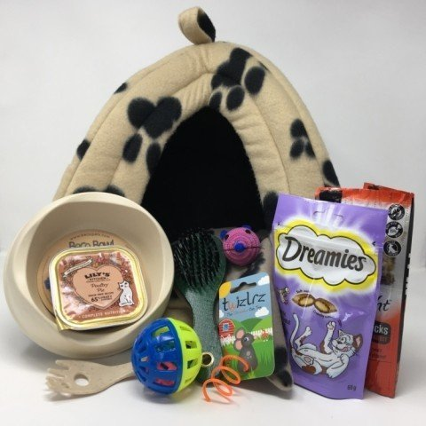 WIN a Kitten House and Cat Treats Hamper!