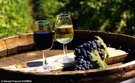 30% OFF Vineyard Tour, Lunch and Wine Tasting & Lunch for 2 in East Sussex!