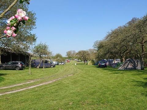 Book Bredy Farm Camping for just £14.00 per night per adult!
