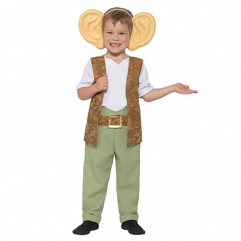 World Book Day - BFG Outfit - £15