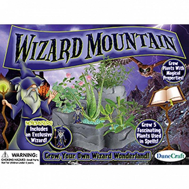 SAVE 50% on this Wizard Mountain Garden!