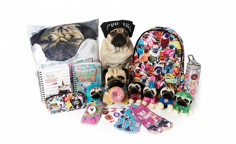 Collect the infamous Doug The Pug toys NOW - from ONLY £5.50!