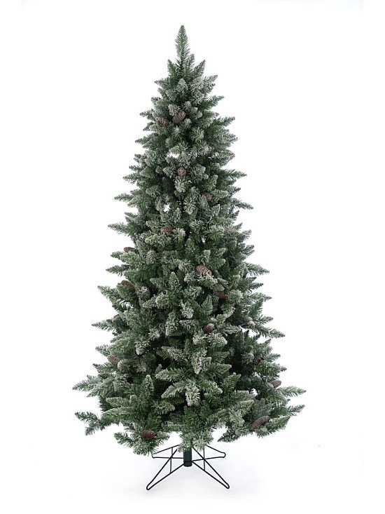 Save up to 30% on Christmas Trees
