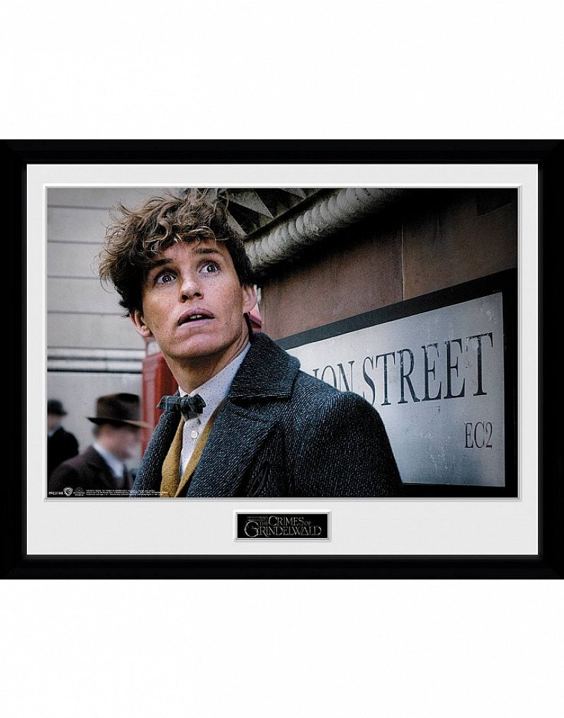 SALE, SAVE ON POSTERS - FANTASTIC BEASTS 2 NEWT SCAMANDER COLLECTOR PRINT!