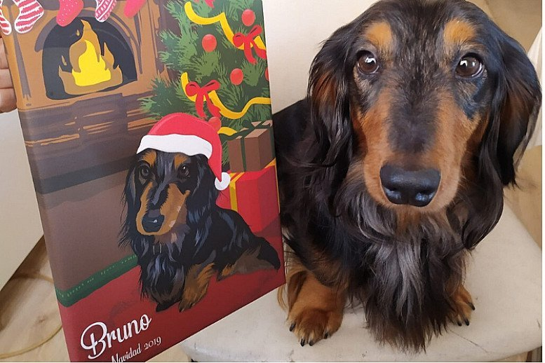 Custom Pet Portrait Canvas - Christmas Edition (20% OFF)