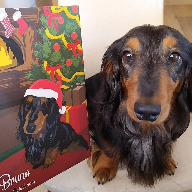 20% Special Discount! - Christmas Pet Portrait Canvas (Don't wait for the competition)