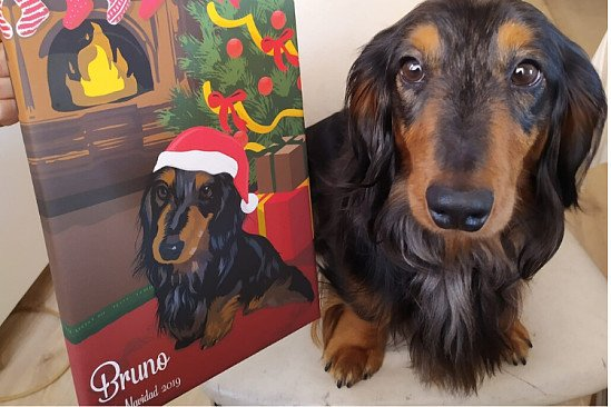 Christmas Pet Portrait Canvas (20% Special Post Competition Discount)