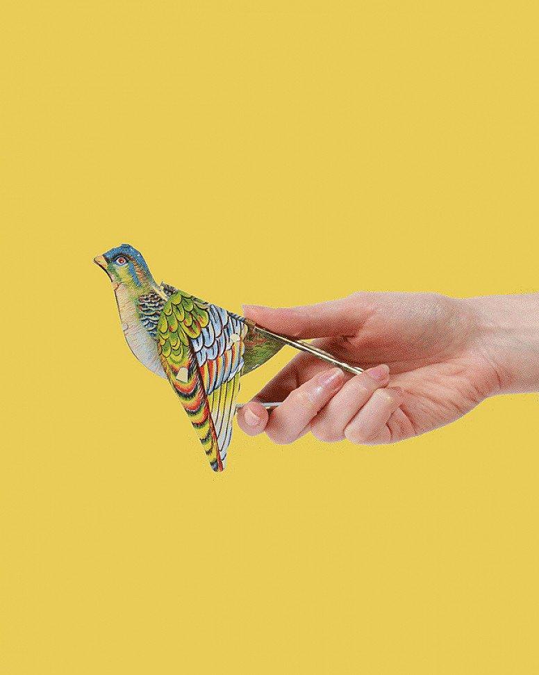 Whistling Sparrow Tin Toy - £4.99!