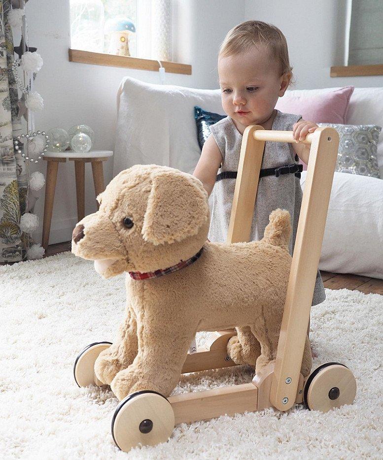 Max, the push along baby walker.