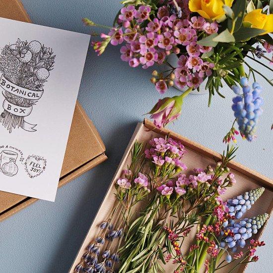 Support Local - Botanical Fresh Flower Box: £12.95!