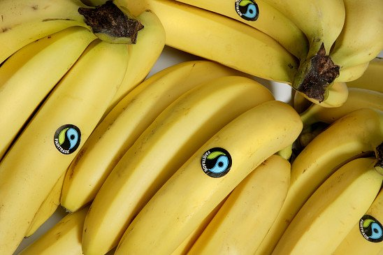 Fairtrade Bananas, from just 16p!