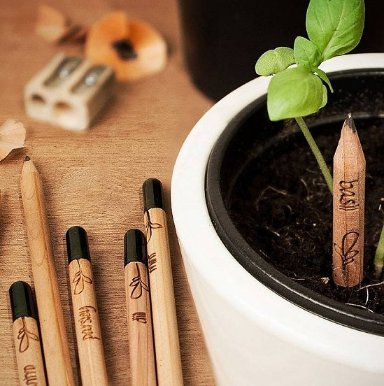 Sprout Plantable Pencils - 3 Pack: £6.85