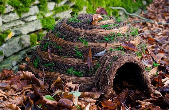 IGLOO HEDGEHOG HOUSE - £27.99!