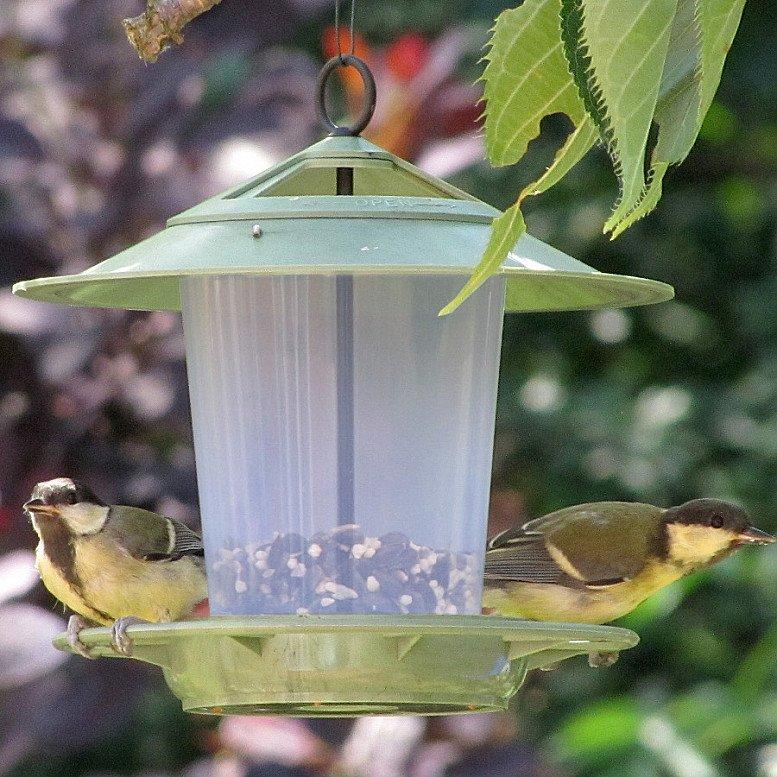 ECO BEACON BIRD FEEDER - £7.95!
