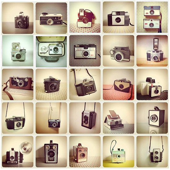 Happy World Photography Day - Choose us, a local business!