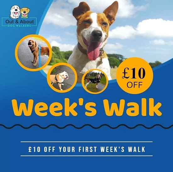 £10 OFF your first week's walk