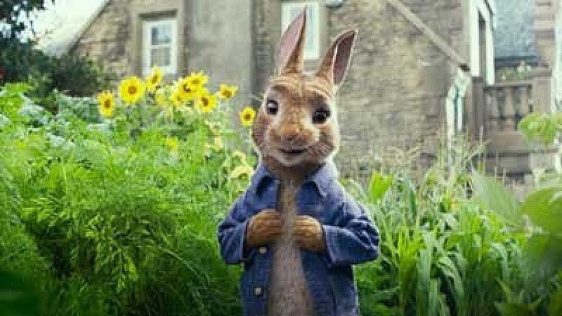 Film: Peter Rabbit (TBC)