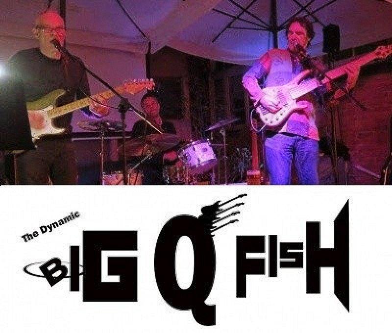 The BIG Q FISH