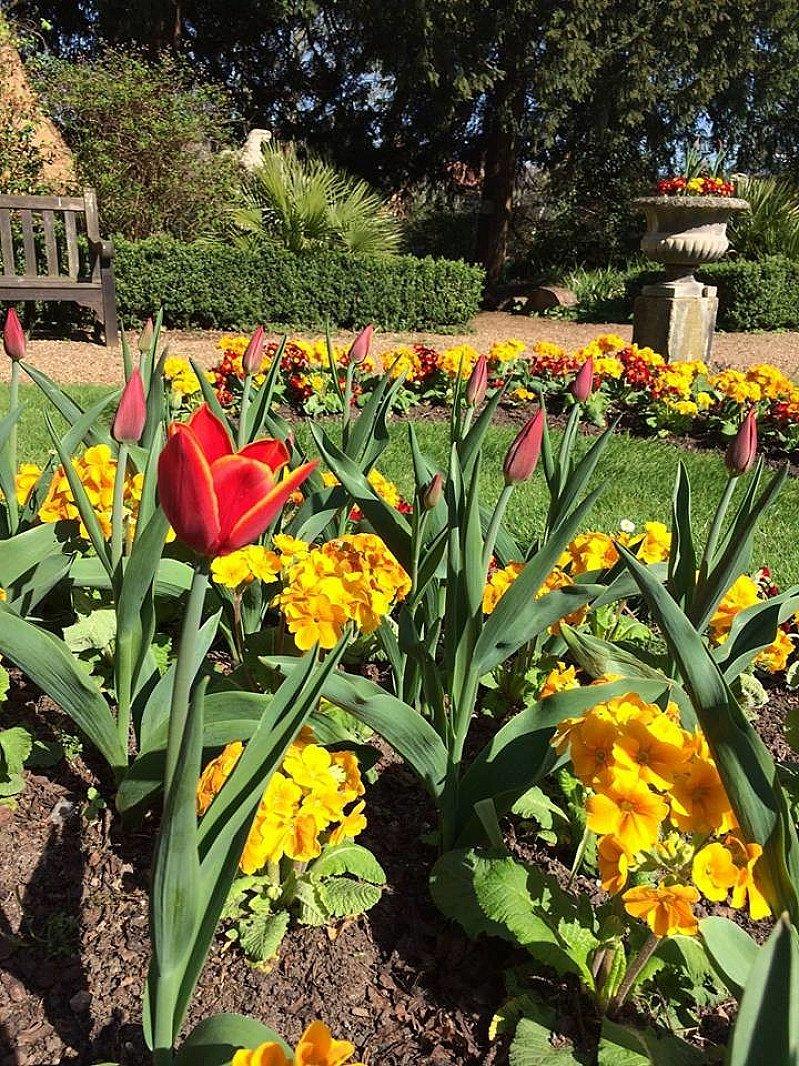 Garden Time: Wednesday 5 September
