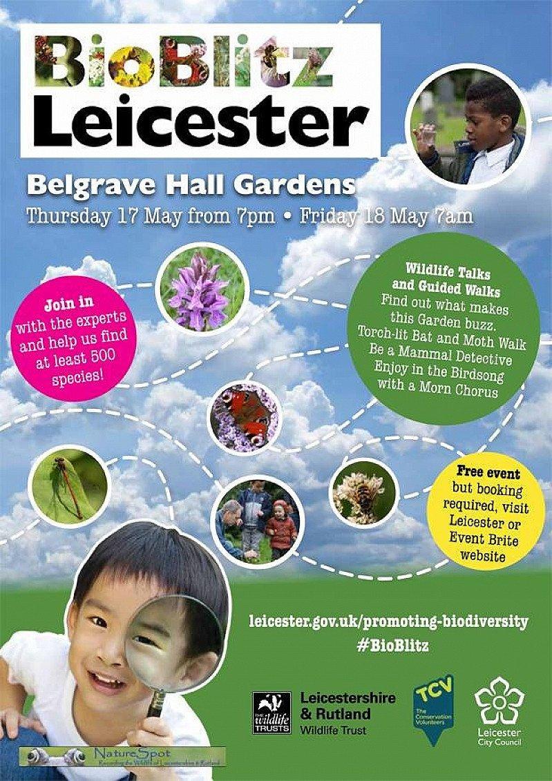 BioBlitz Leicester