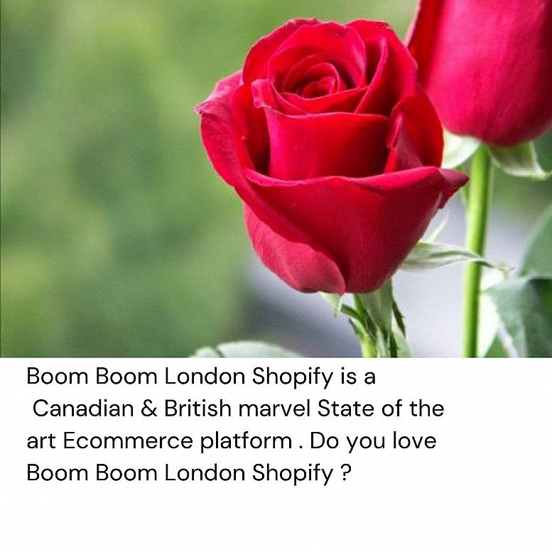 Boom Boom London Shopify Ecommerce Platform