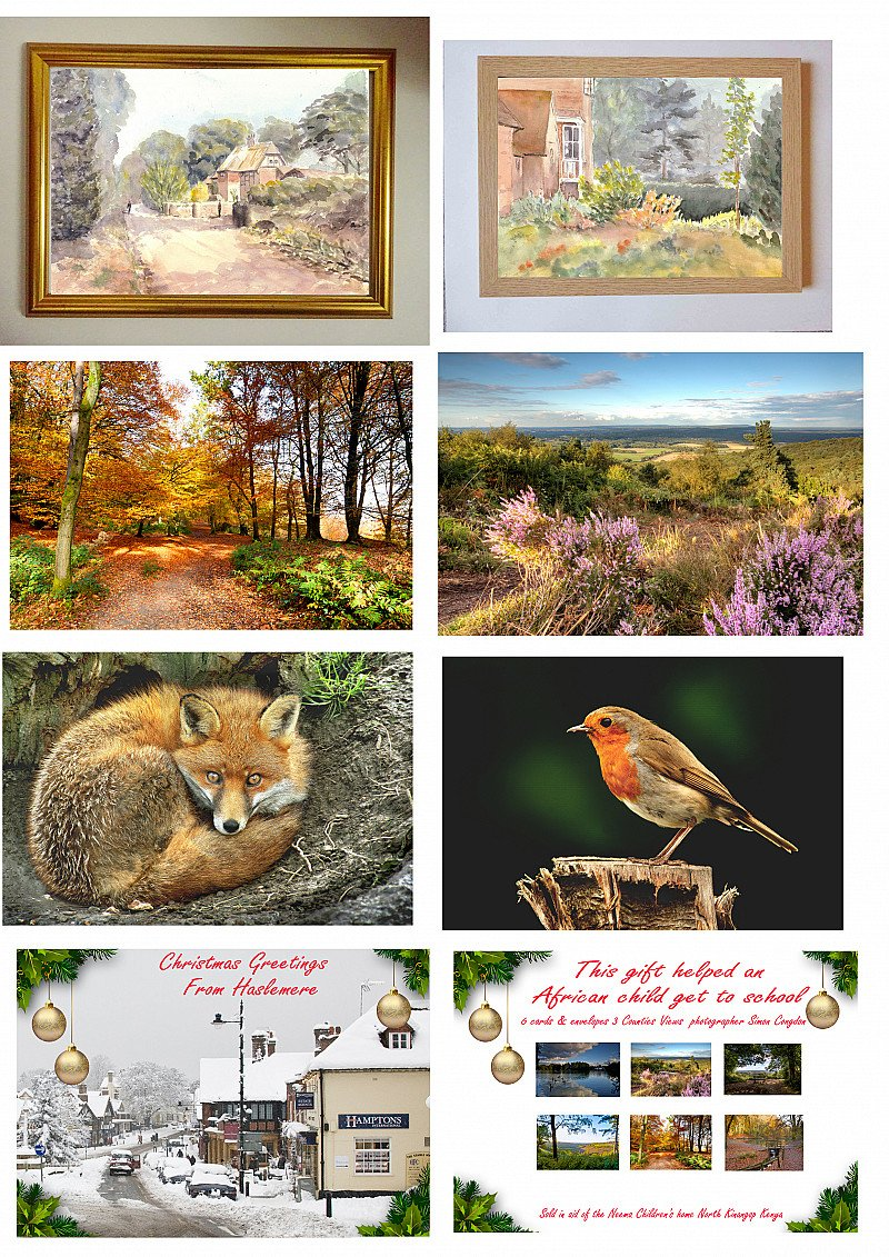 The Neema Society A range of canvasses, framed prints and greetings cards