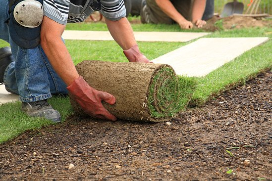 We cater to any of your Landscape Gardening needs, just call via the claim option!