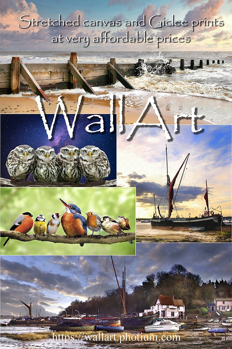 Wallart amazing prices on all products