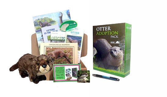 Try the Otter Shop on Black Friday