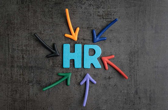 Reduced Fees and December FREE for small business HR support